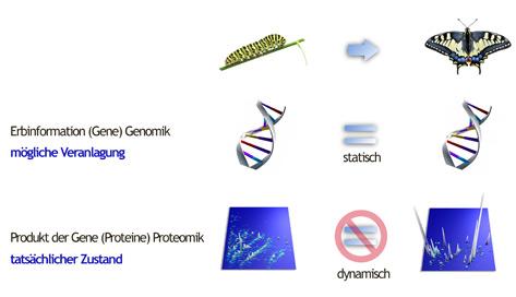 Proteommusterdiagnostick